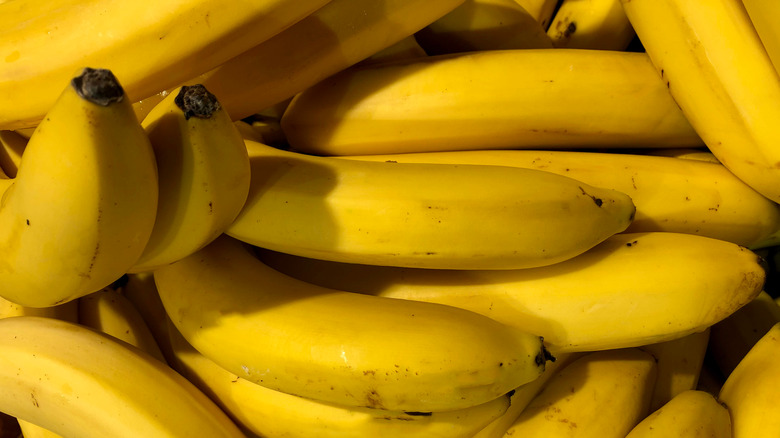 A close up view of bananas still in their peel