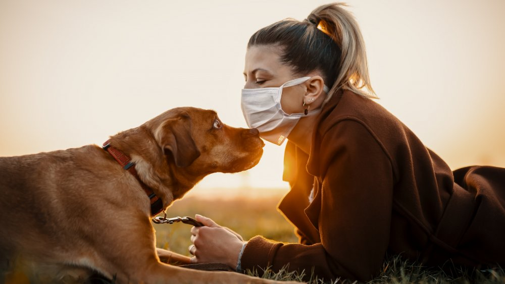 Dog with woman in face mask