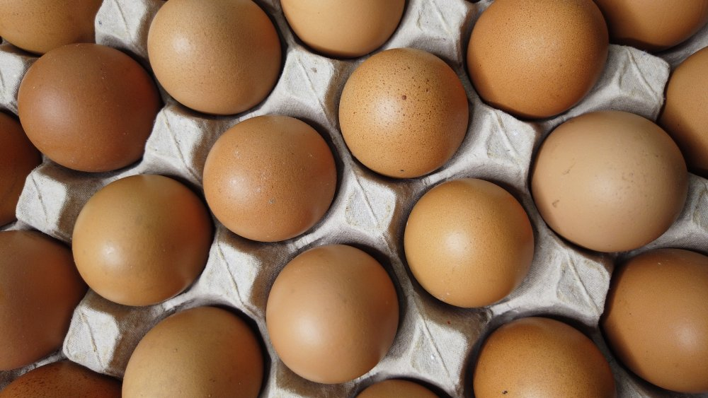 What the egg diet really does to your body