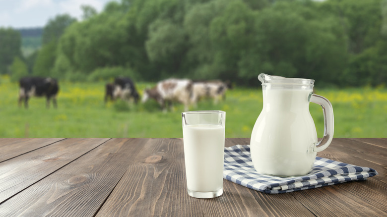 Whole-fat vs fat-free milk: Which one is better for you?
